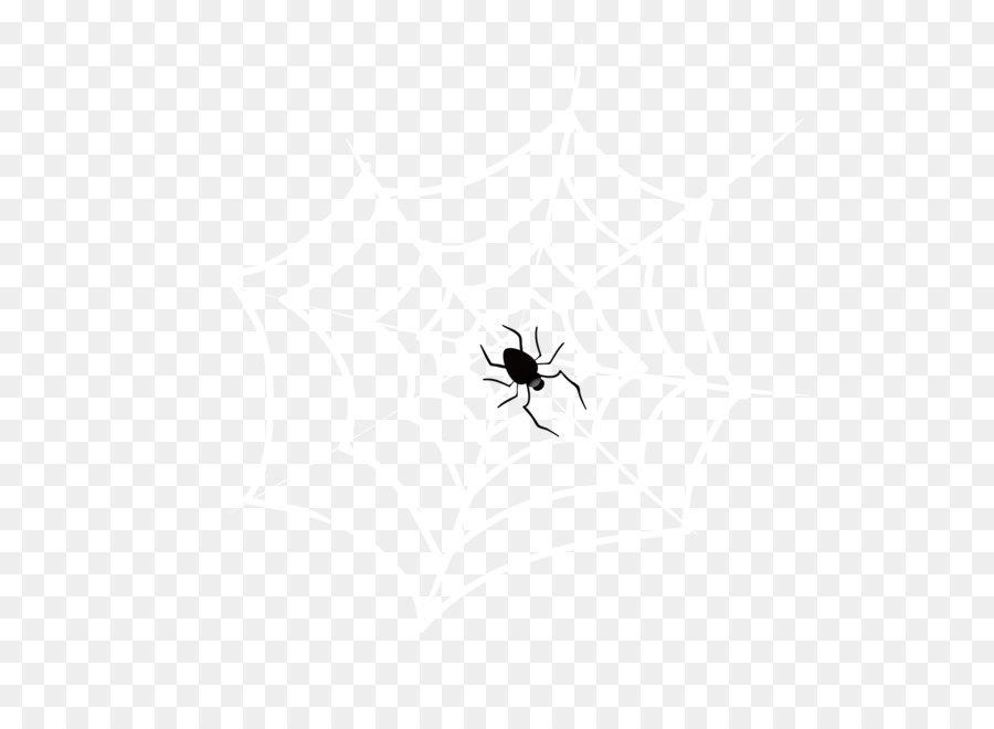 Descarga gratuita de Araña, Los Insectos, Artrópodos Imágen de Png