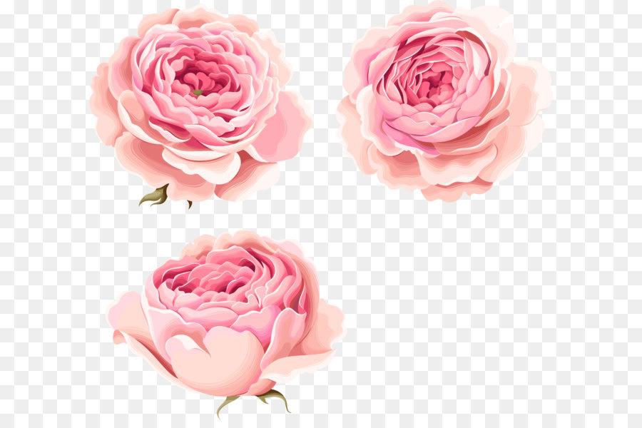 Descarga gratuita de Flor, Peonía, Flores Imágen de Png