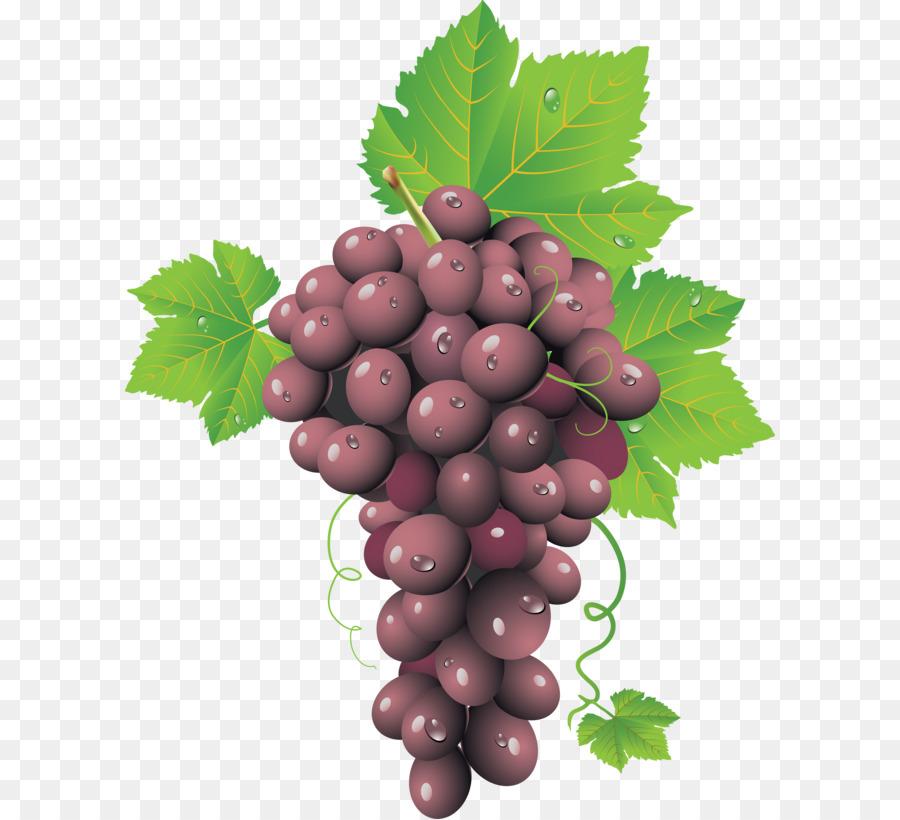 Descarga gratuita de Vino, Grappa, Uva Imágen de Png