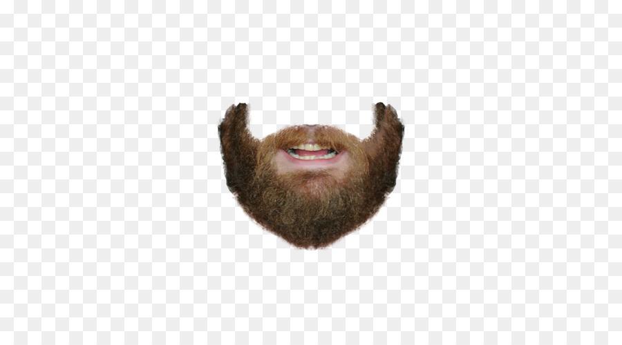 Descarga gratuita de Barba, Mundial De Barba Y Bigote Campeonatos, Bigote imágenes PNG