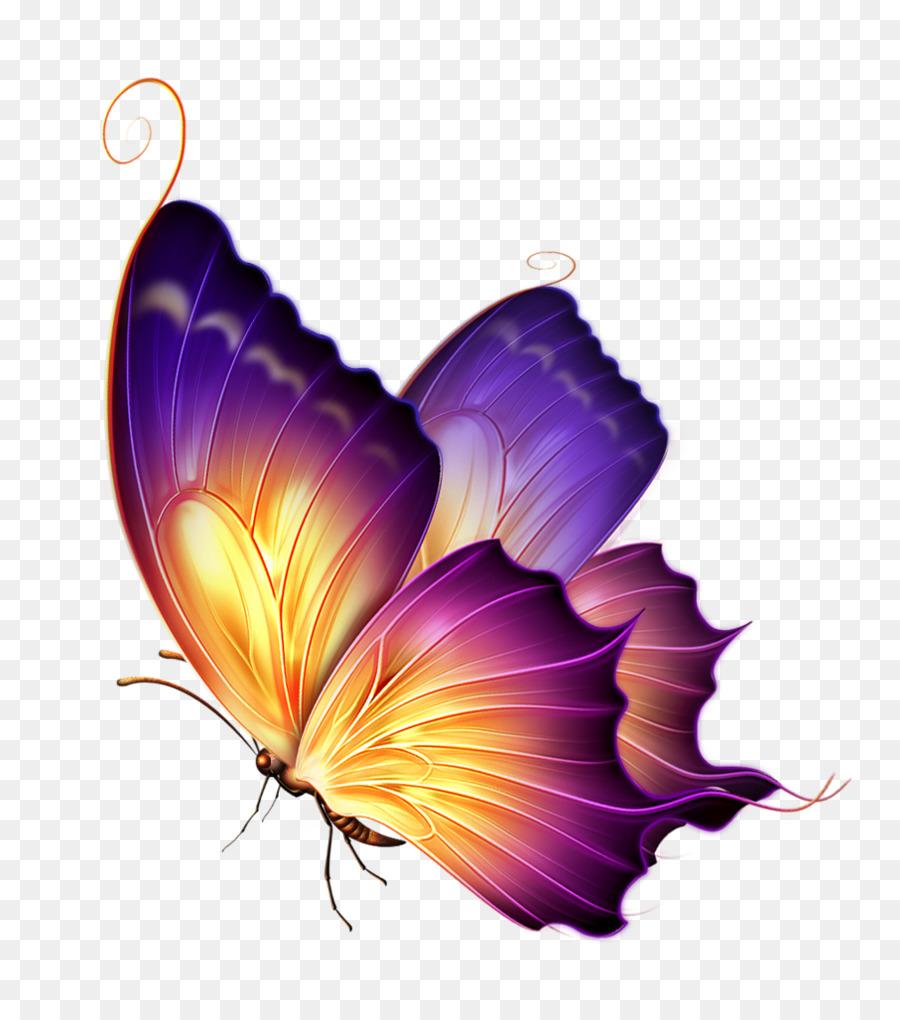Descarga gratuita de Mariposa, Color, Púrpura Imágen de Png