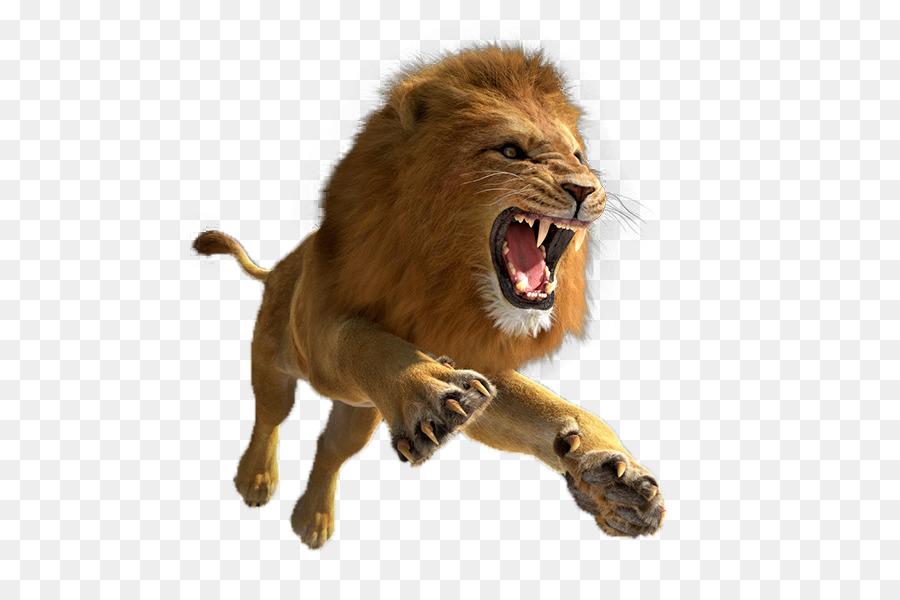 Descarga gratuita de León, León De Búsqueda Simulador, Tigre Imágen de Png