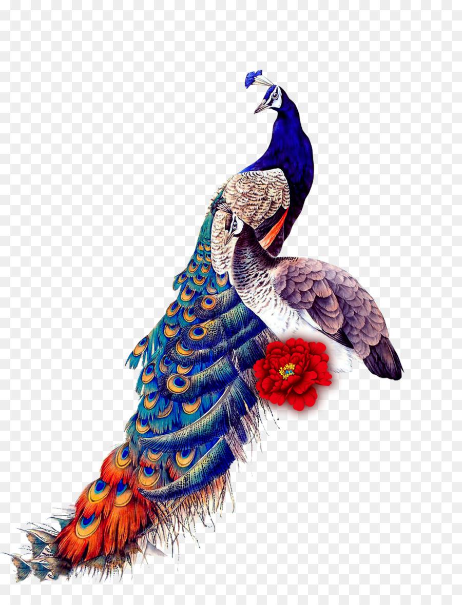 Descarga gratuita de Pavo Real, Pájaro, Ipad Mini imágenes PNG