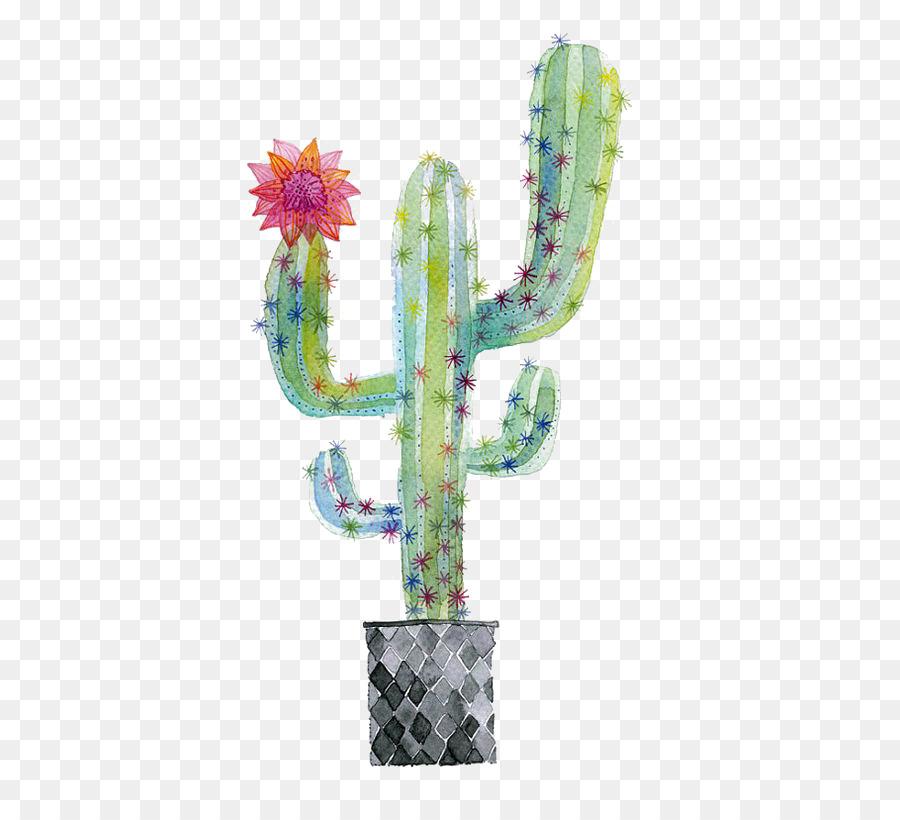 Descarga gratuita de Cactaceae, Pintura A La Acuarela, Planta Suculenta imágenes PNG