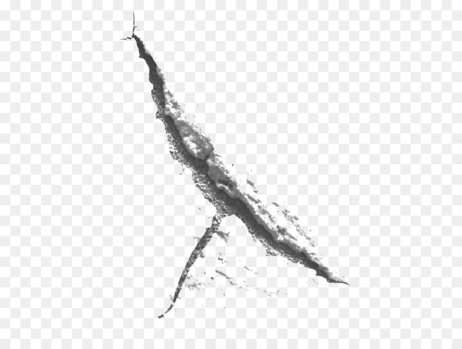 Descarga gratuita de La Cicatriz, La Piel, Dibujo Imágen de Png