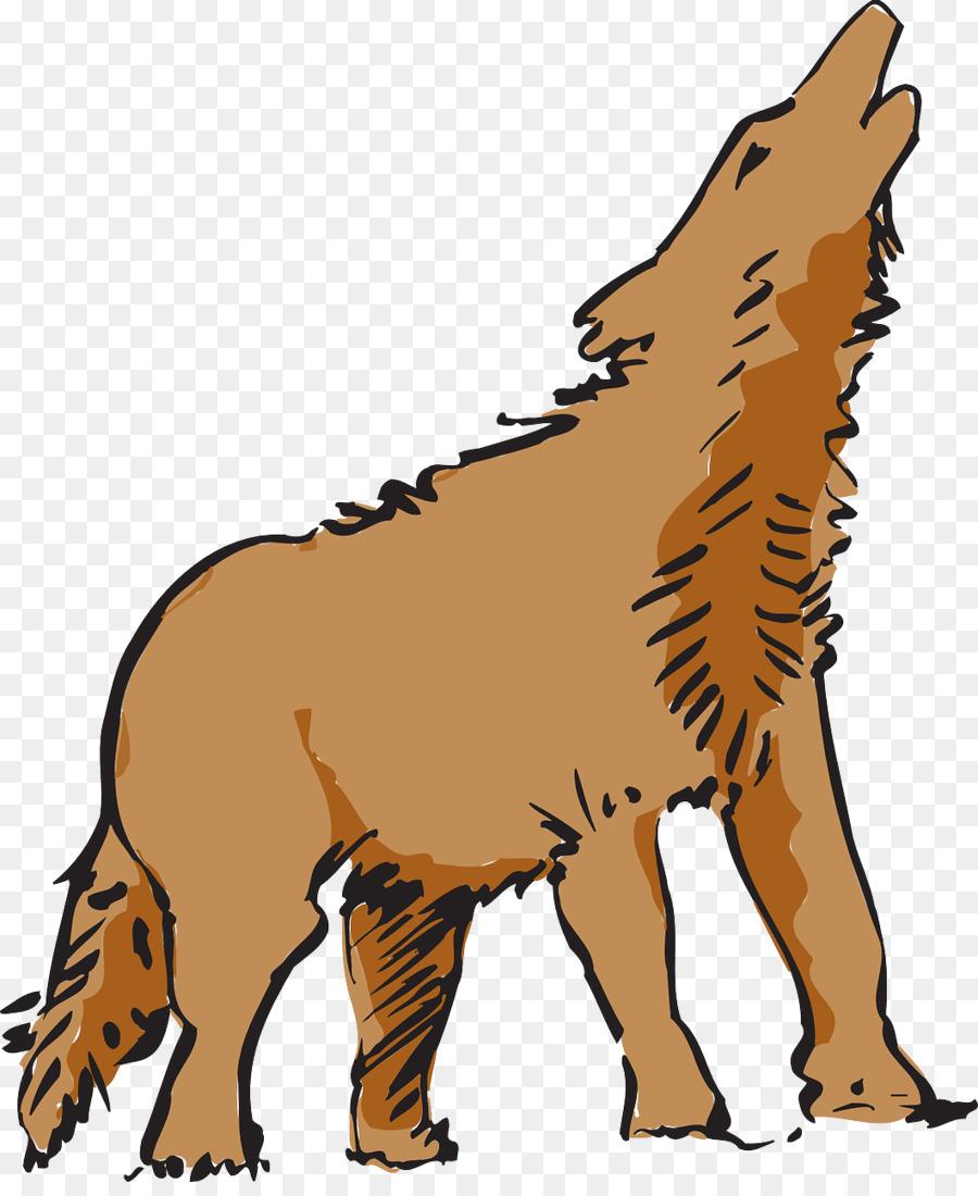 Descarga gratuita de Perro, Coyote, Animal imágenes PNG