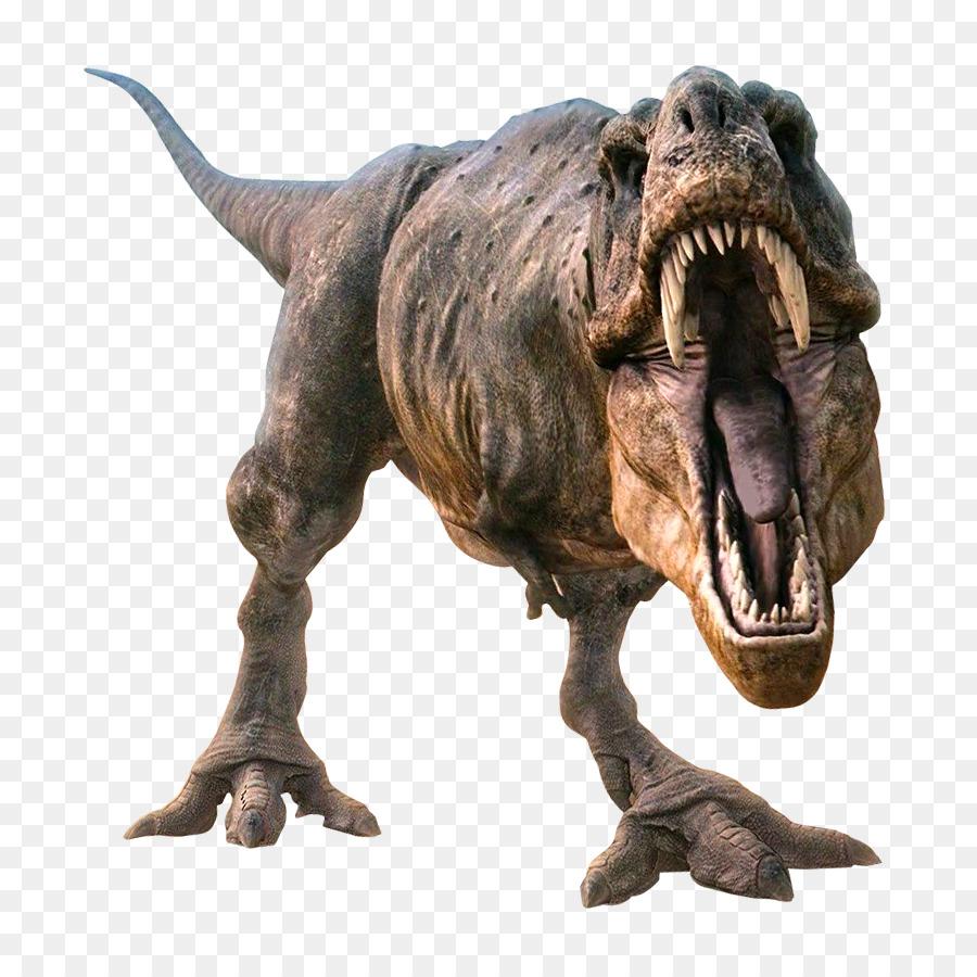 Descarga gratuita de Adocus, 3d Computer Graphics, Dinosaurio Imágen de Png