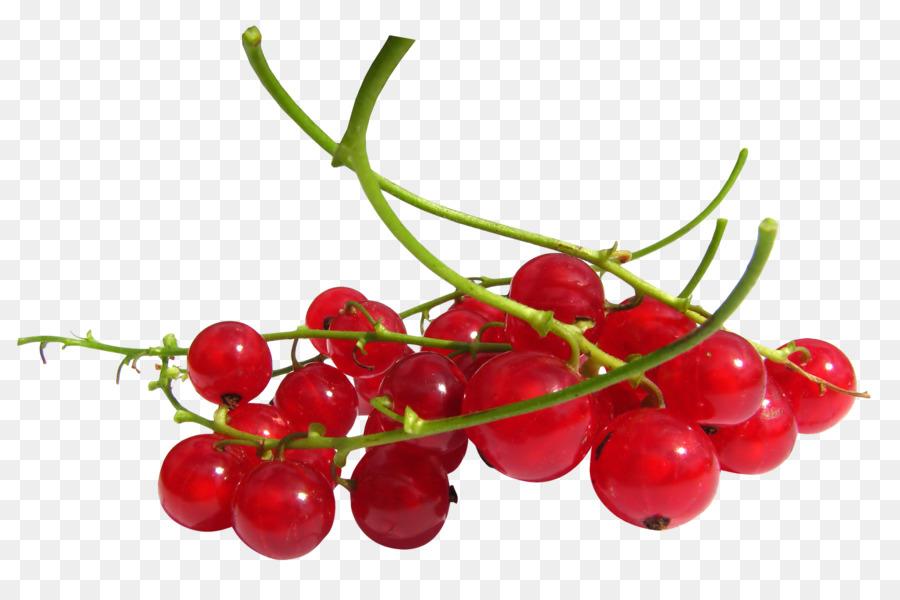 Descarga gratuita de Grosella Roja, Frutti Di Bosco, Zante Grosella imágenes PNG