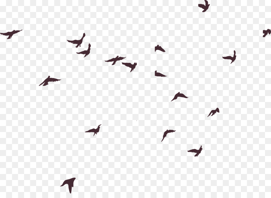 Descarga gratuita de Pájaro, Silueta, Adobe Illustrator Imágen de Png
