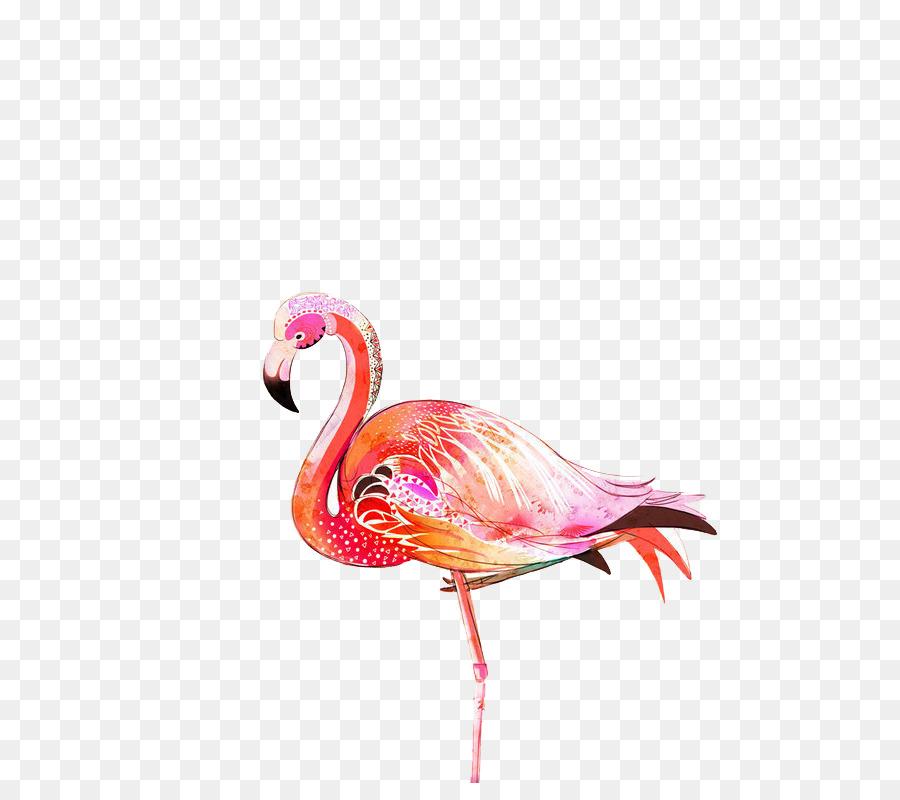 Descarga gratuita de Flamingo, Pájaro, Flamenco Imágen de Png
