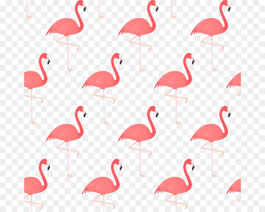 Descarga gratuita de Flamingo, Pájaro, Dibujo Imágen de Png