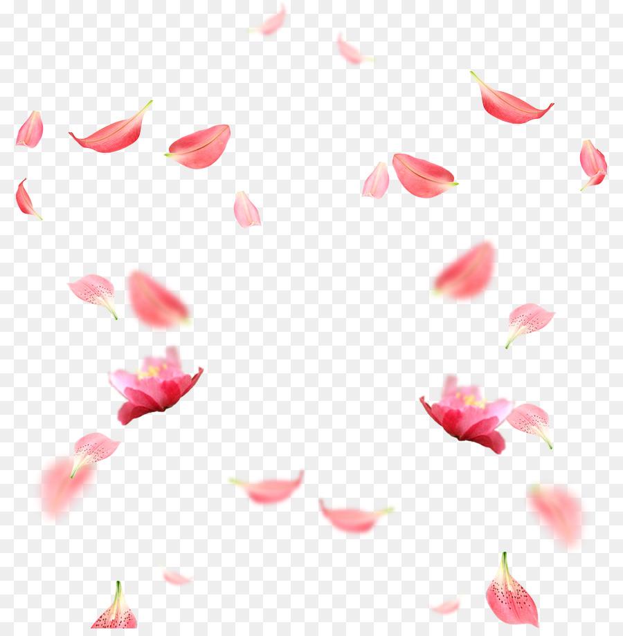 Descarga gratuita de Pétalo, Modelo De Color Rgb, Descargar Imágen de Png