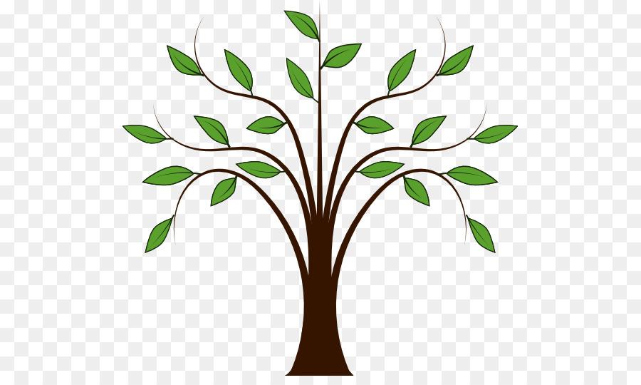 Descarga gratuita de árbol, Libre De Contenido, árbol De La Familia Imágen de Png