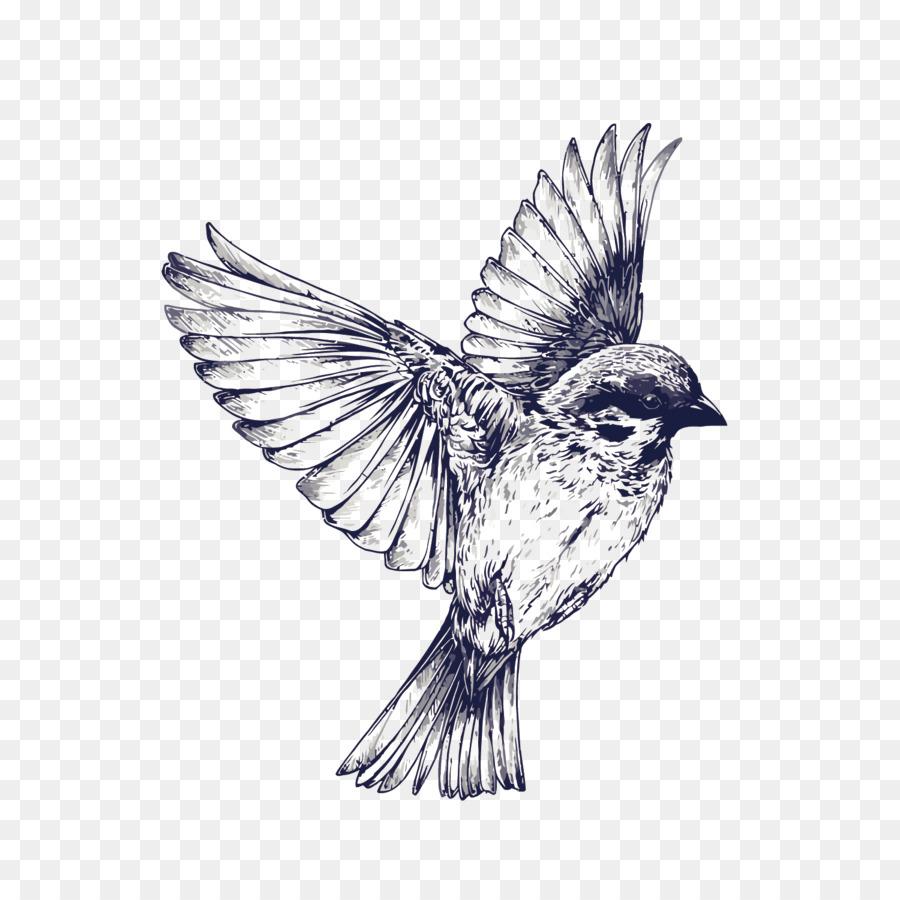 Vuelo De Los Pájaros Del Tatuaje Del Dibujo Tragar Vector Pintado