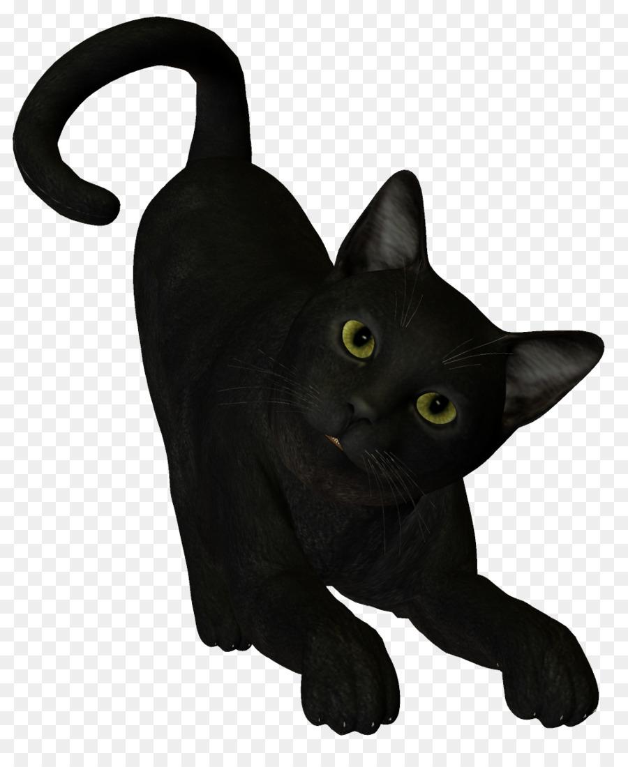 Descarga gratuita de Gato Negro, Gato, La Brujería imágenes PNG