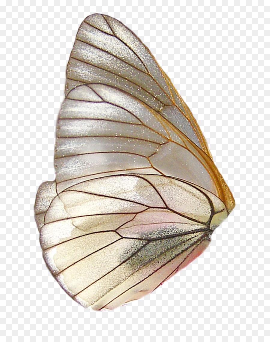 Descarga gratuita de Mariposa, Ala, Postscript Encapsulado imágenes PNG