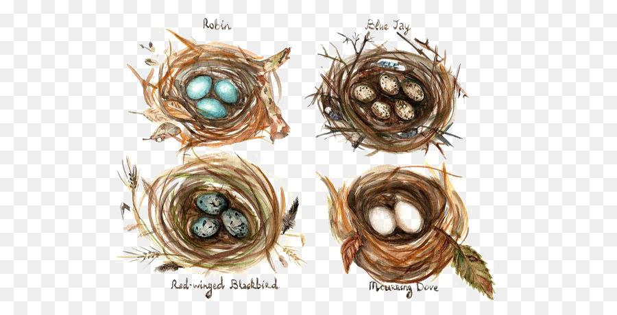 Descarga gratuita de Pájaro, Comestibles De Aves Anidan, Nido De Pájaro imágenes PNG