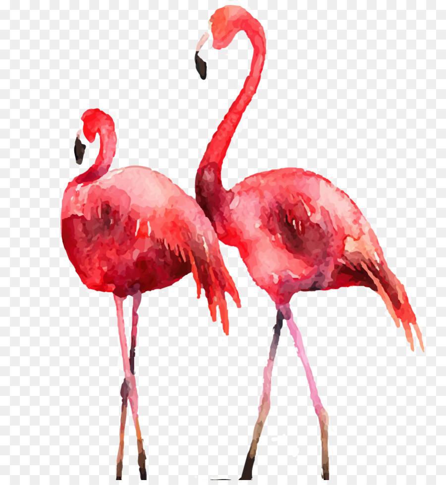 Descarga gratuita de Flamingo, Cartel, Grabado Imágen de Png