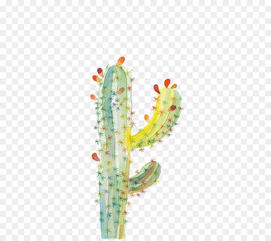 Descarga gratuita de Cactaceae, Ugallery, Pintura A La Acuarela imágenes PNG