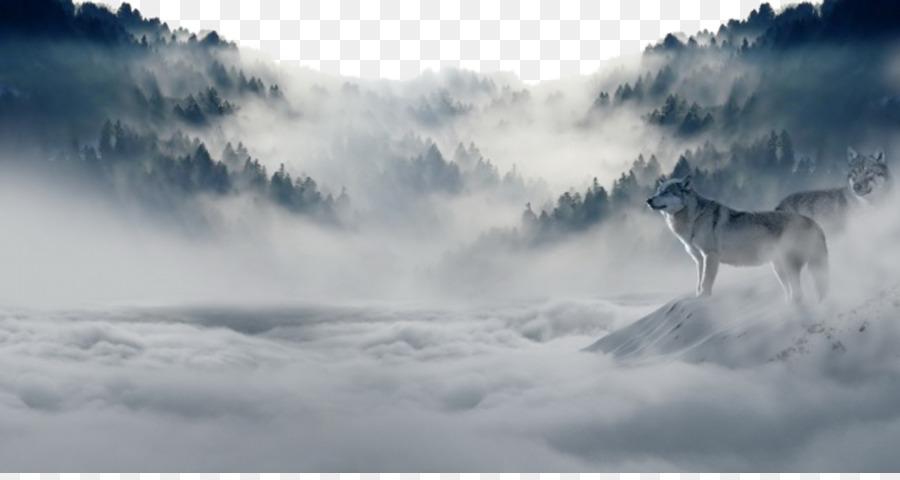 Descarga gratuita de El Lobo ártico, La Naturaleza, La Nube Imágen de Png