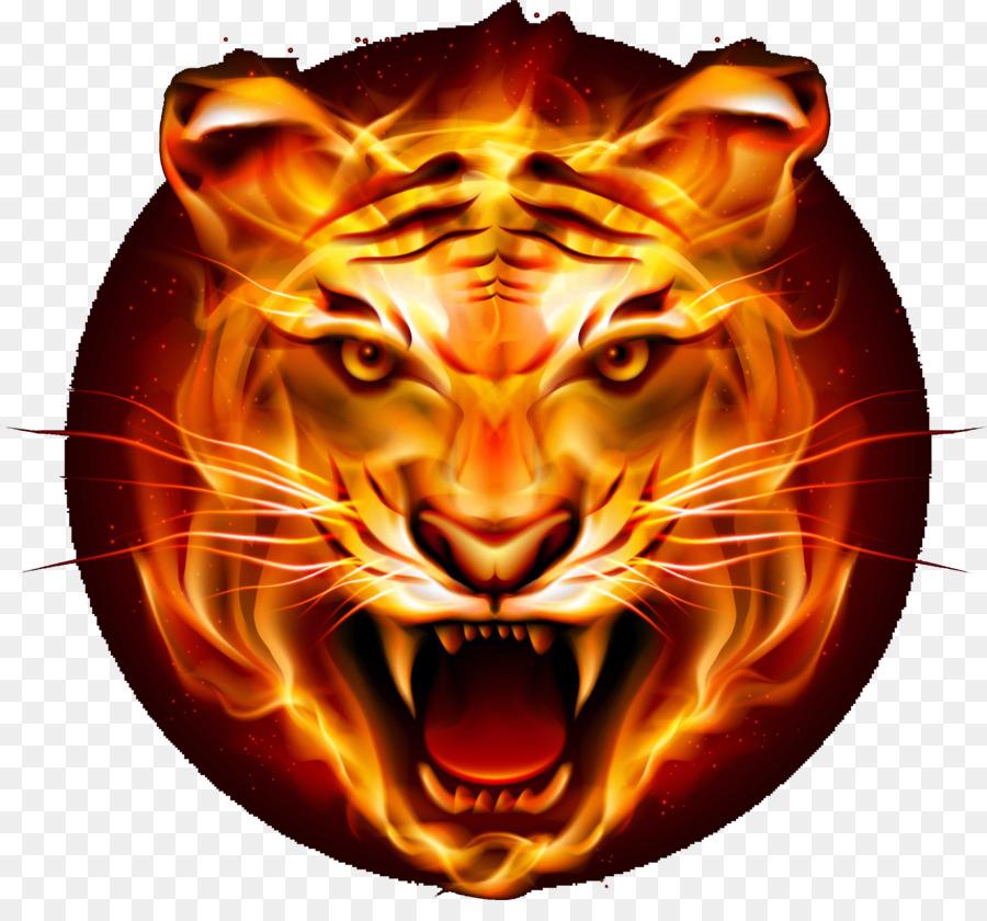 Descarga gratuita de Tigre, Felidae, Leopard Imágen de Png