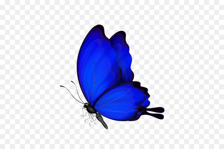 Descarga gratuita de Mariposa, Los Insectos, Marca De Agua imágenes PNG