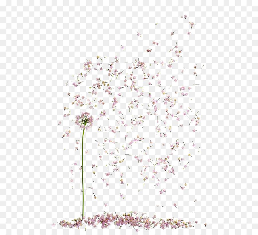 Descarga gratuita de Diseño Floral, Pétalo, Flor Imágen de Png