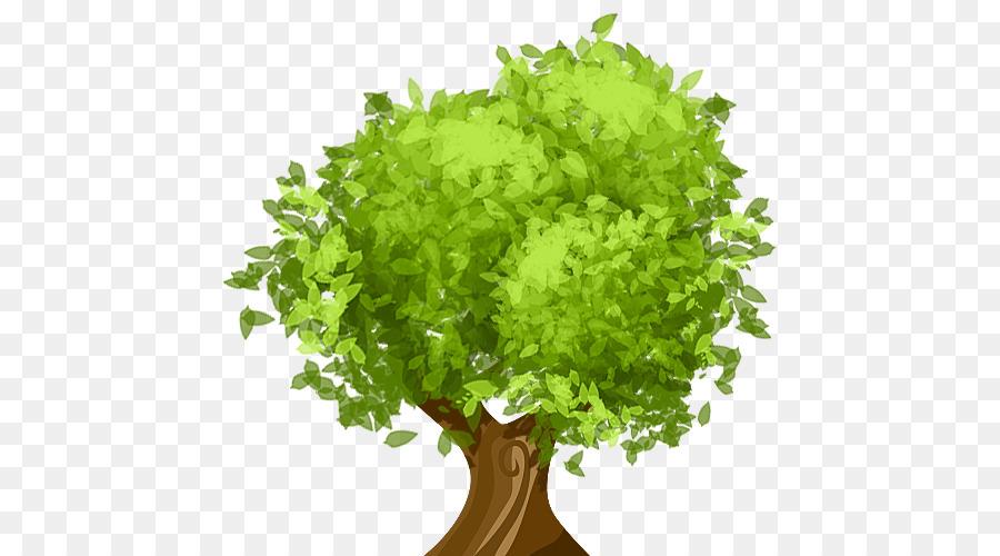Descarga gratuita de árbol, La Poda, Arborista Imágen de Png