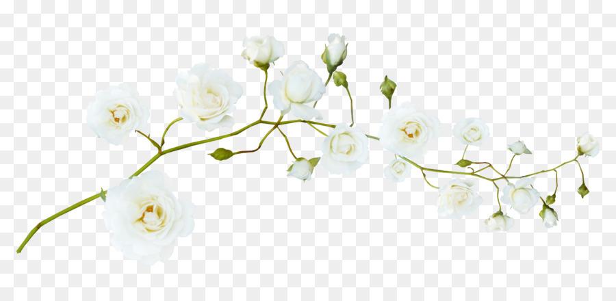 Descarga gratuita de Flor, Blanco, Garland imágenes PNG
