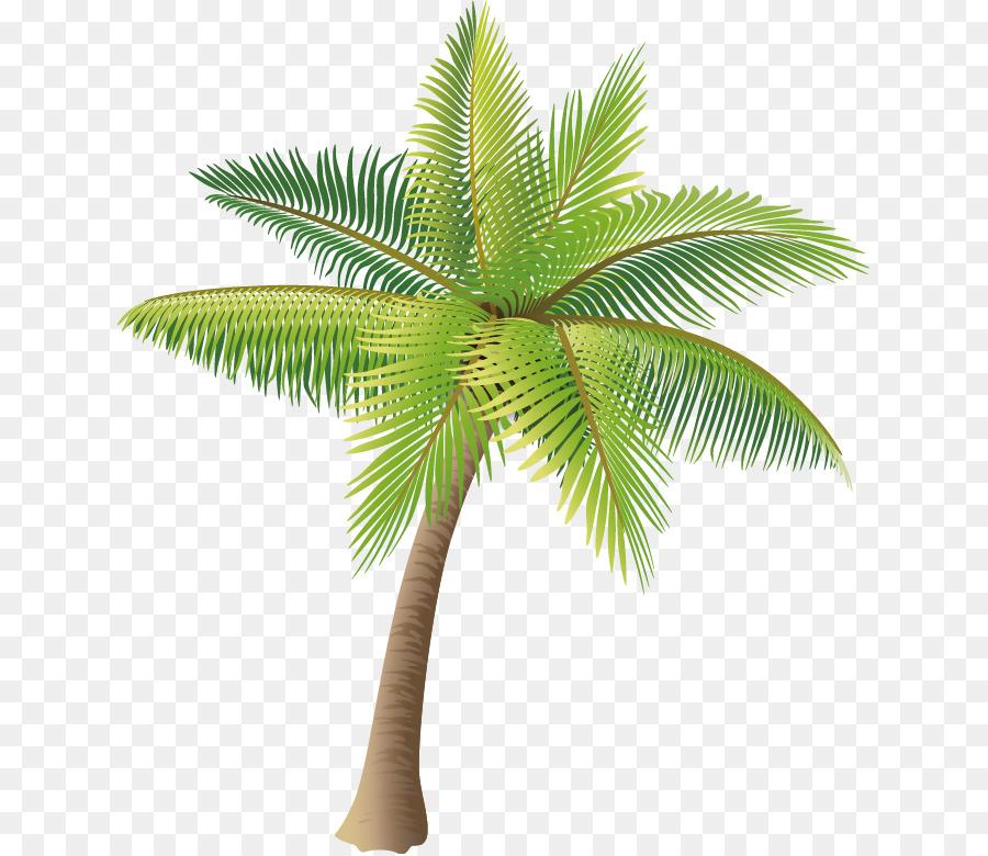 Descarga gratuita de Coco, Postscript Encapsulado, árbol imágenes PNG