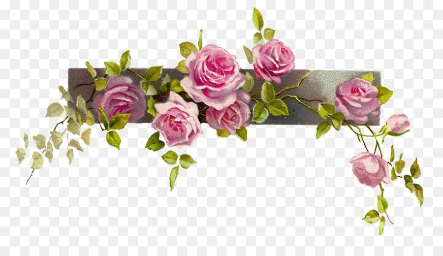 Flor Rosa Flores De Color Rosa Imagen Png Imagen