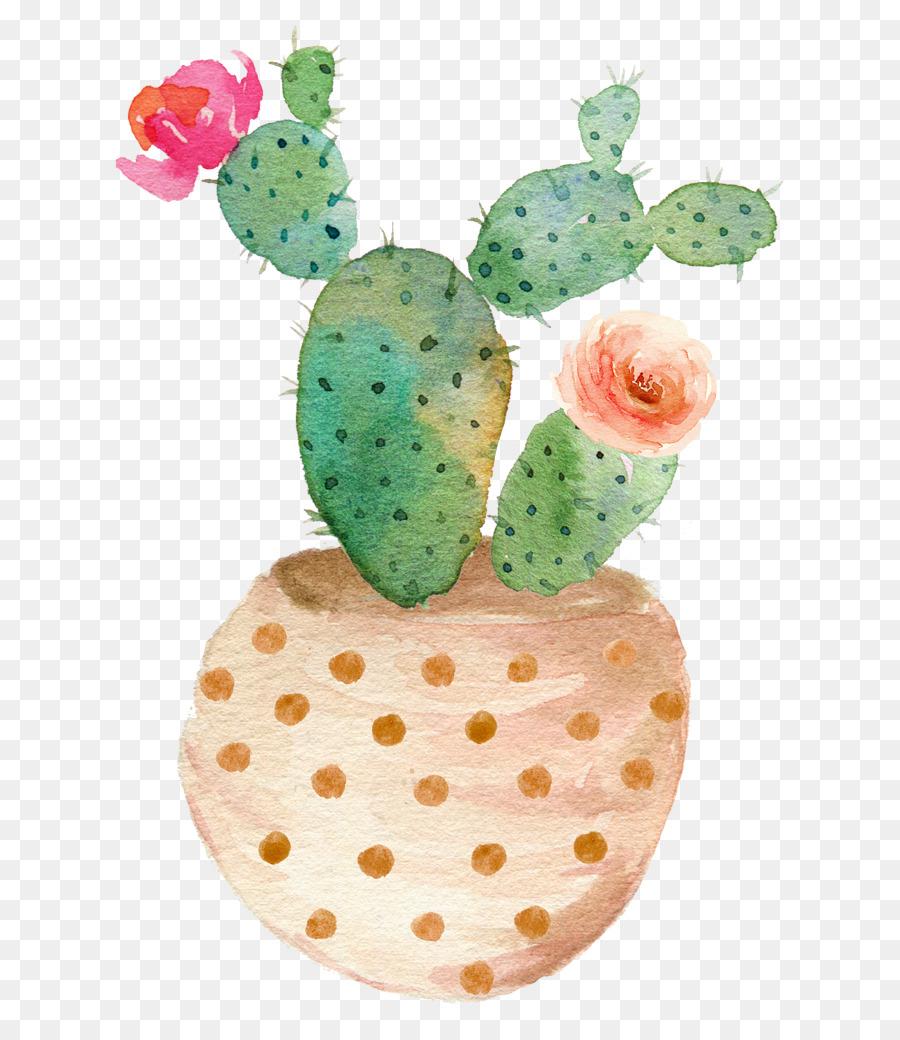 Descarga gratuita de Planta Suculenta, Pintura A La Acuarela, Impresión imágenes PNG