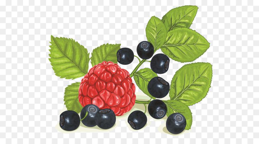 Descarga gratuita de Berry, Frambuesa, Arándanos Imágen de Png