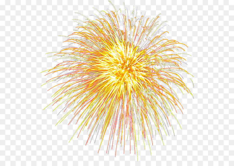 Descarga gratuita de Le Nouvel Un Bebe, Fuegos Artificiales, Año Nuevo Chino Imágen de Png