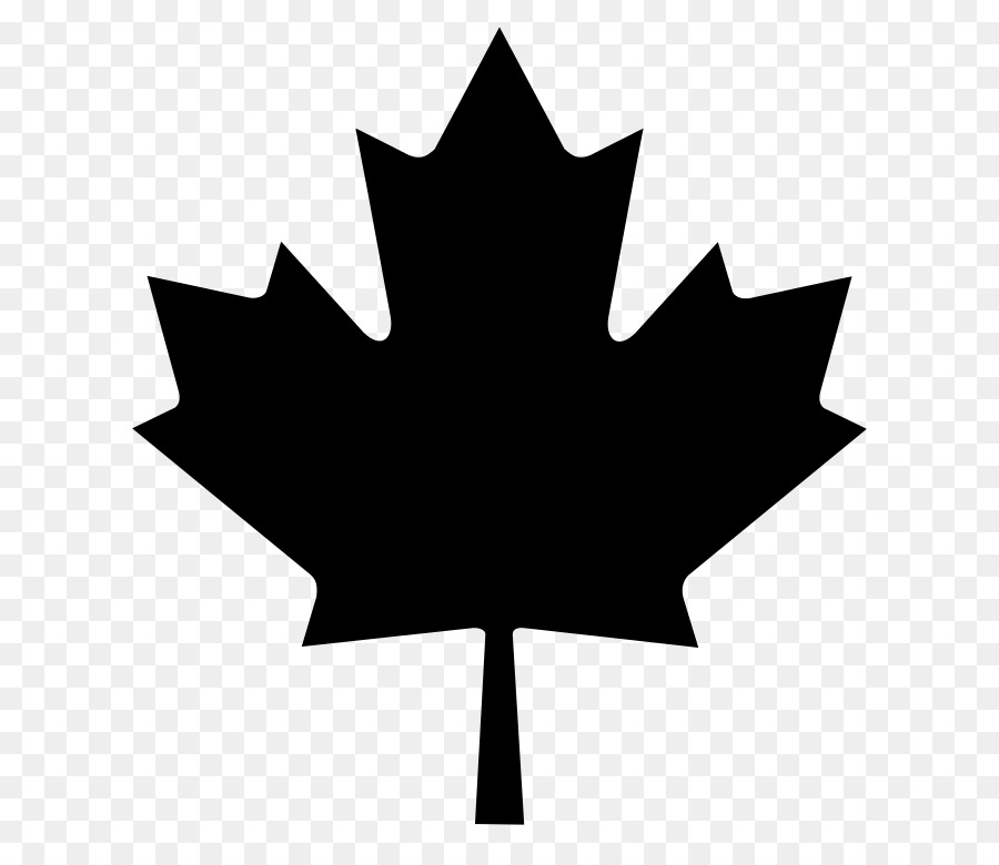 Descarga gratuita de Canadá, Bandera De Canadá, Camiseta Imágen de Png