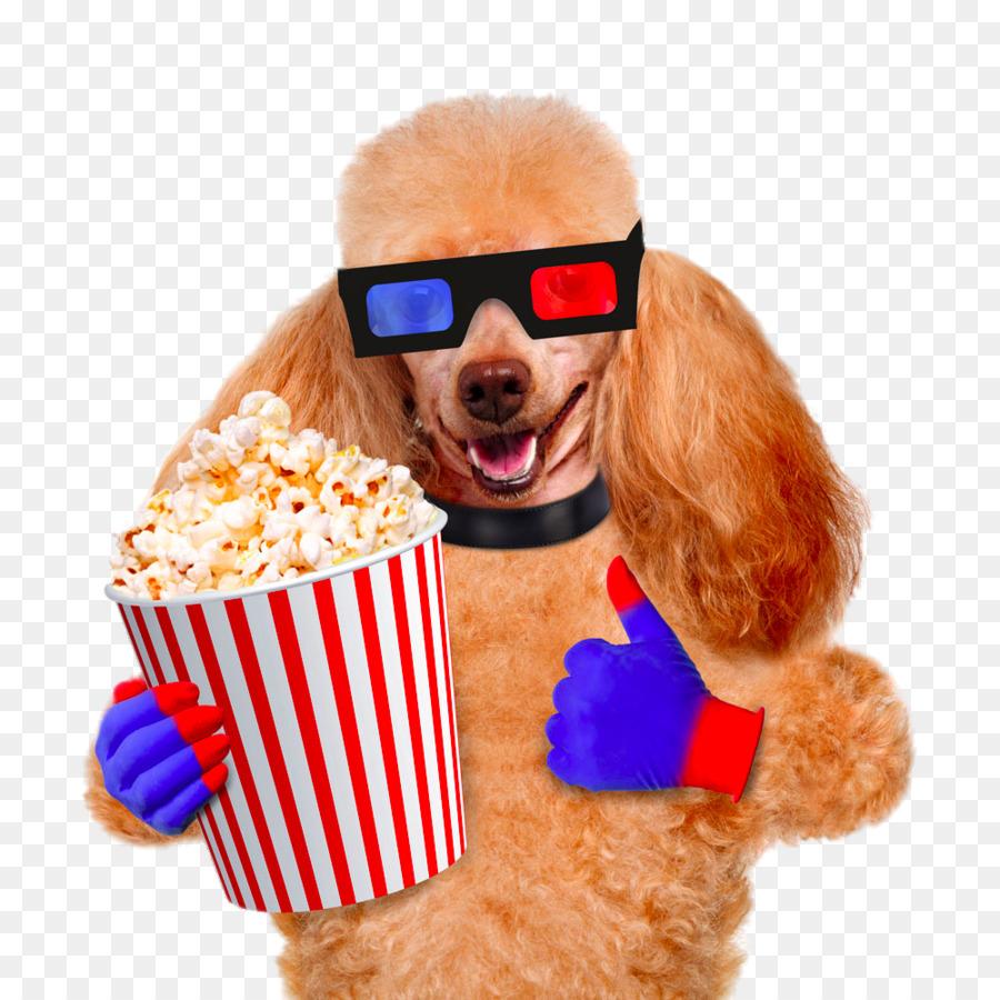 Descarga gratuita de Perro, Las Palomitas De Maíz, La Película Imágen de Png