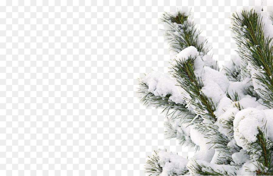 Descarga gratuita de Invierno, La Nieve, Sonrisa Imágen de Png
