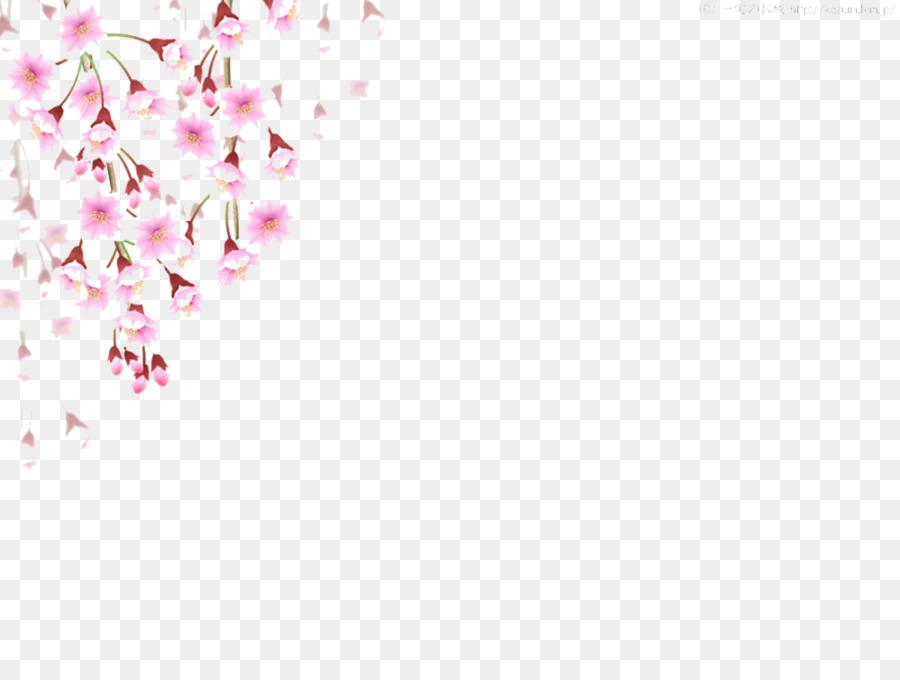 Descarga gratuita de De Los Cerezos En Flor, Cherry, Flor Imágen de Png