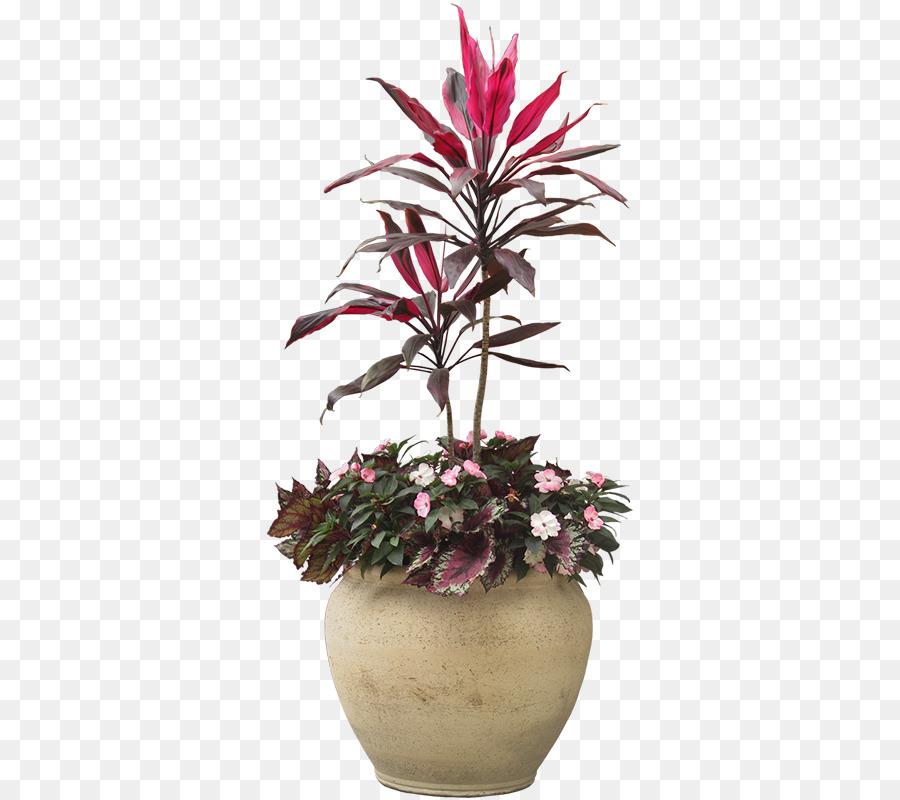 Descarga gratuita de Planta De Interior, Planta, Maceta Imágen de Png