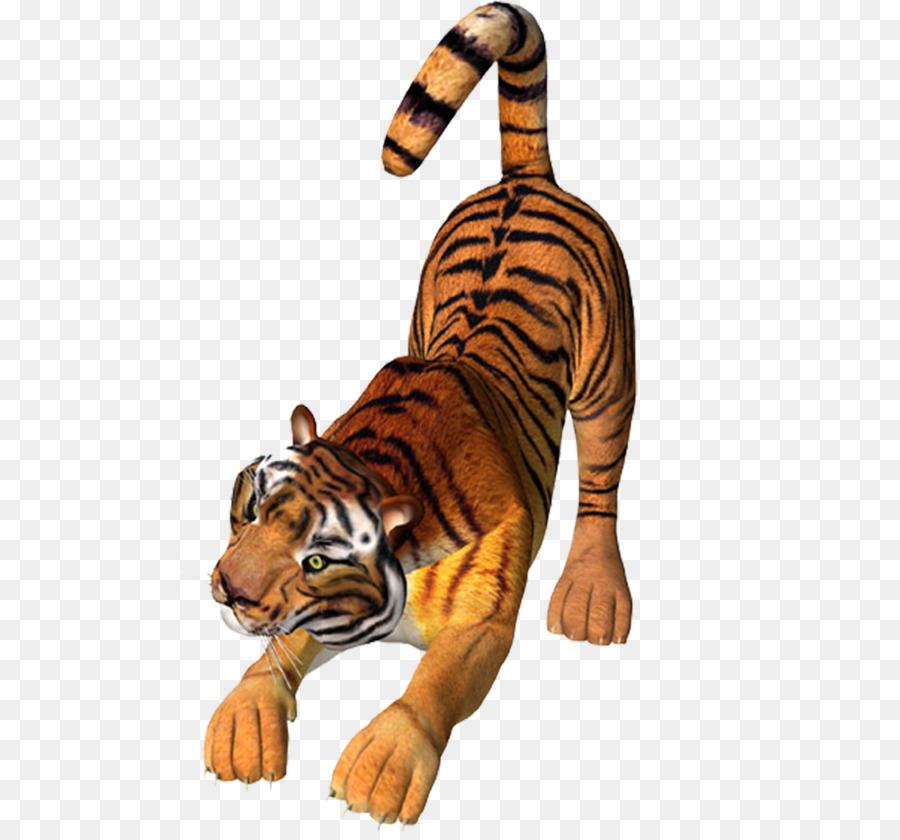 Descarga gratuita de Tigre, León, Gato Imágen de Png