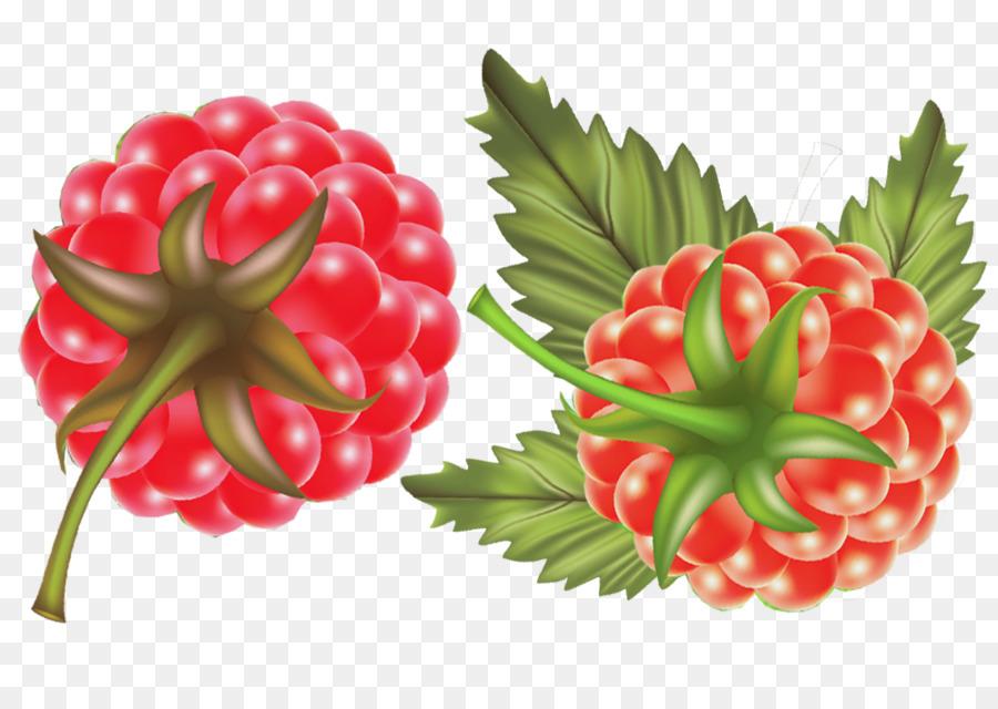 Descarga gratuita de Berry, Fresa, Frambuesa Imágen de Png