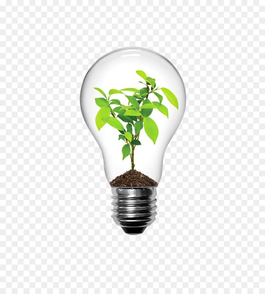 Descarga gratuita de La Luz, Bombilla De Luz Incandescente, Iluminación Imágen de Png
