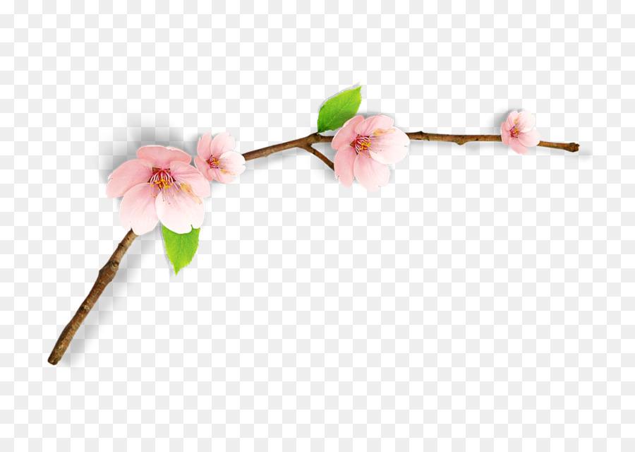 Descarga gratuita de De Los Cerezos En Flor, Pintura A La Acuarela, Modelo De Color Rgb imágenes PNG