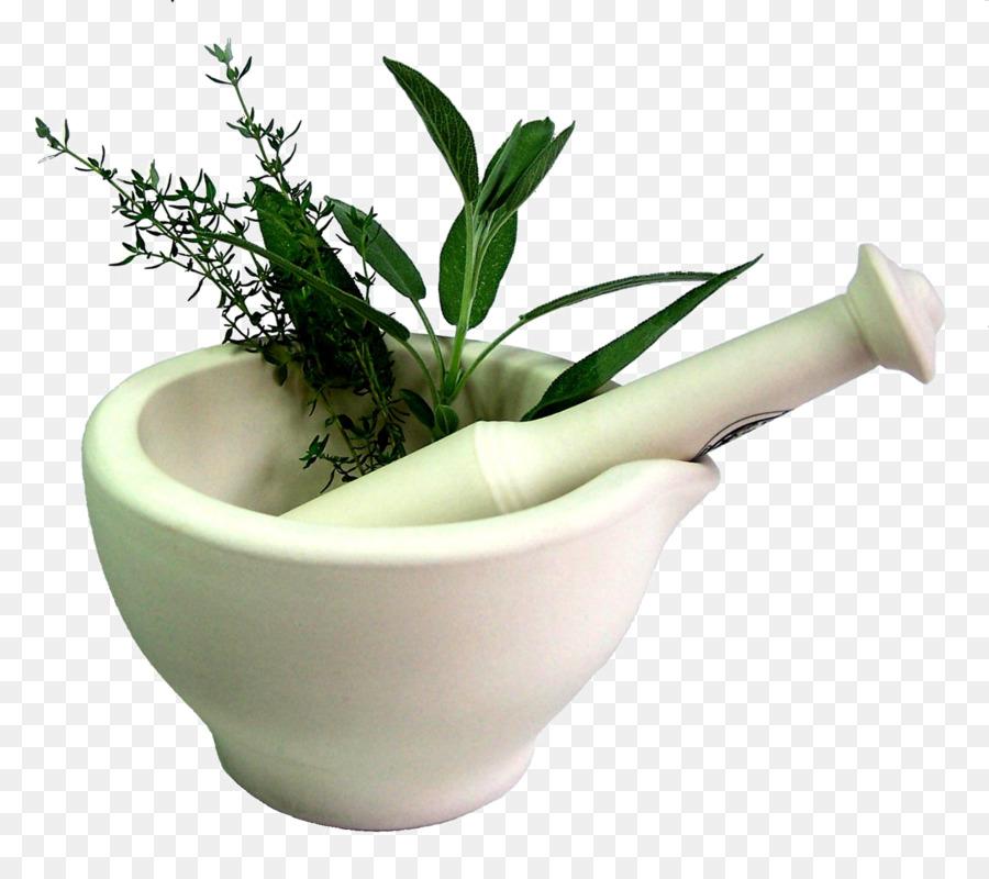 Descarga gratuita de Herboristería, Medicina, Hierba Imágen de Png