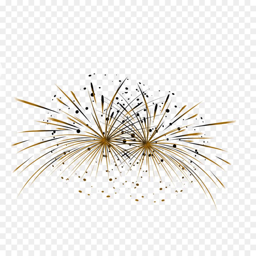 Descarga gratuita de Fuegos Artificiales, Vecteur, La Pirotecnia Imágen de Png