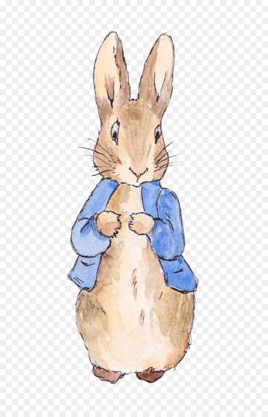 Descarga gratuita de Peter Rabbit, Cuento De Peter Rabbit, Invitación De La Boda Imágen de Png