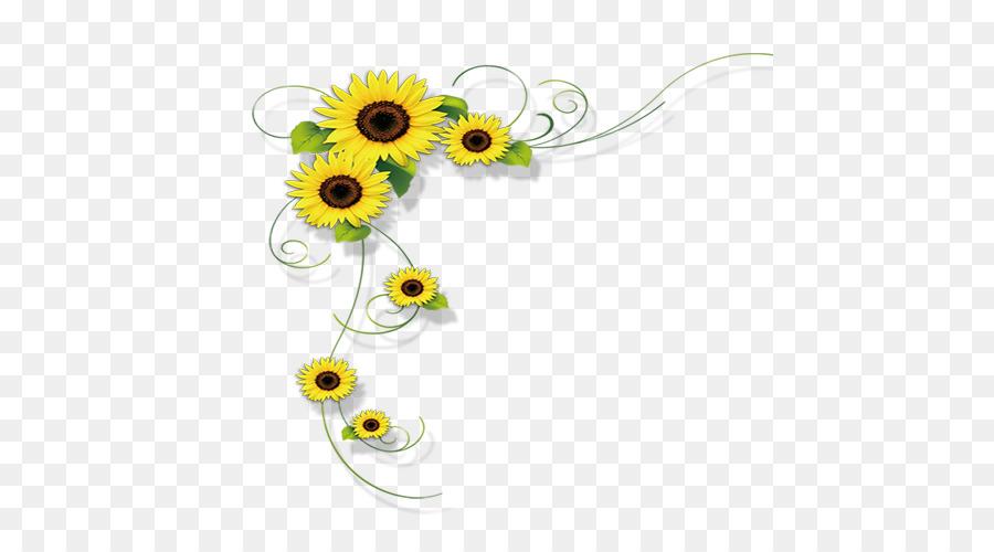 Descarga gratuita de Común De Girasol, Flor, La Fotografía Imágen de Png