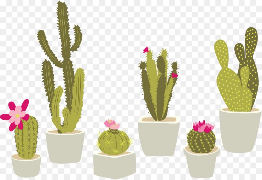 Descarga gratuita de Cactaceae, Planta De Interior, Planta Suculenta Imágen de Png