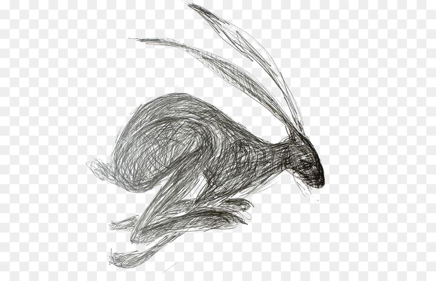 Descarga gratuita de Liebre Europea, Dibujo, Conejo imágenes PNG