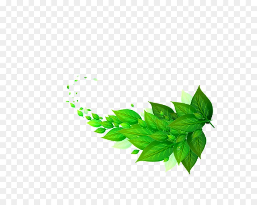 Descarga gratuita de Hoja, Verde, Descargar Imágen de Png